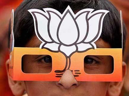 निकाय चुनाव: भाजपा में एक अनार, सौ बीमार