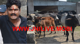 गायों की अकाल मौत से आक्रोशित नंदी सेना करेंगी आमरण अनशन